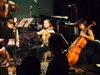 Live2006_5